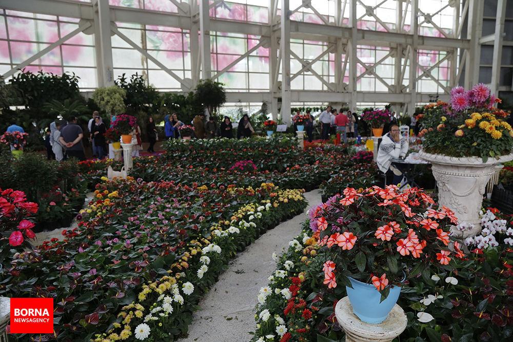 نمایشگاه گل و گیاه |بوستان گفتگو غرفه